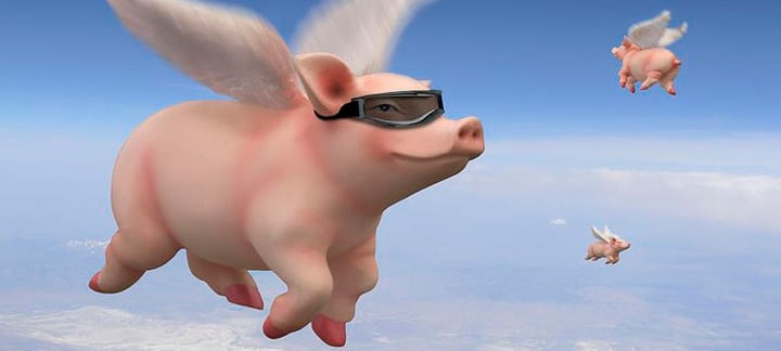 Use idioms at IELTS when pigs fly